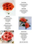 Gerbera Package